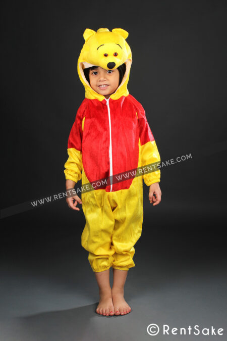 Pooh costume on hire in Pune