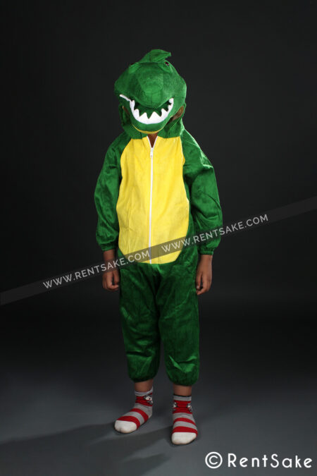 Crocodile costume on rent