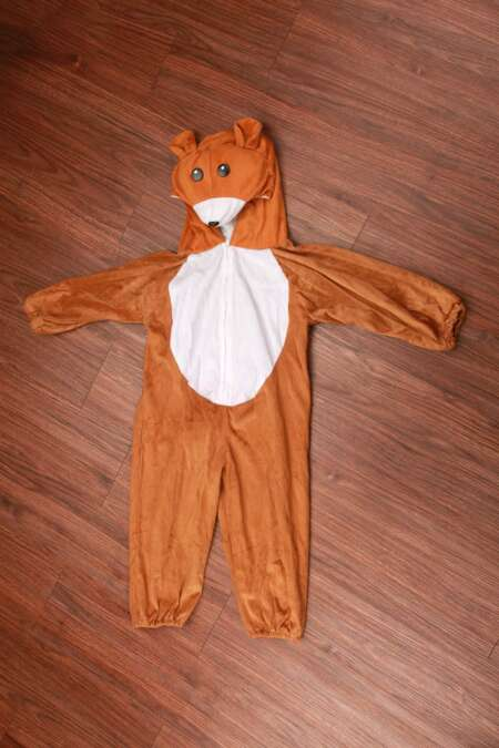 Brown Bear fancy dress costume