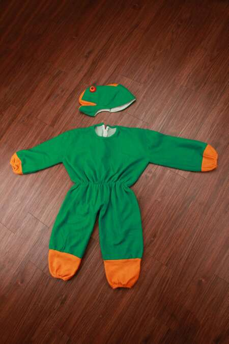 Frog fancy dress costume