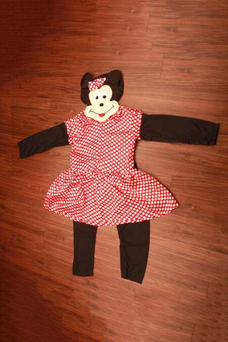 Minnie Mouse fancy dress costume