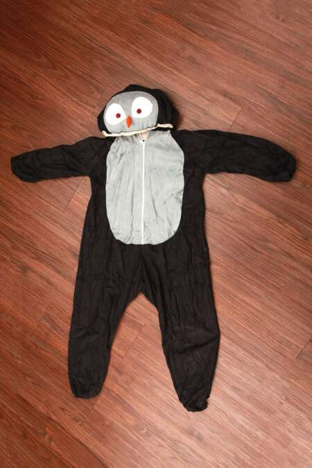 Owl fancy dress costume