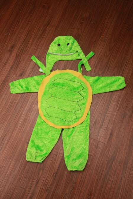 Tortoise fancy dress costume