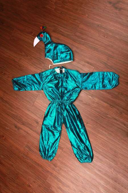 Peacock jumpsuit fancy dress costume