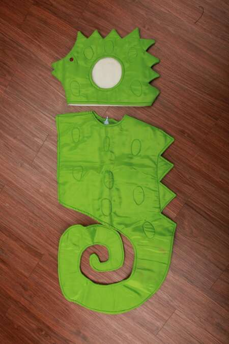 Sea horse fancy dress costume